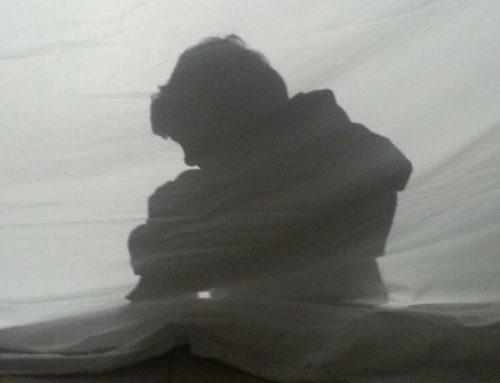 FUORIPROGRAMMA ONLINE: il teatro delle ombre